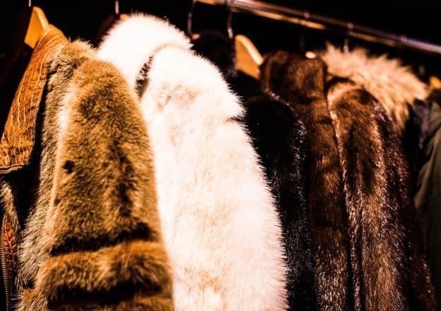 animal furs fashion